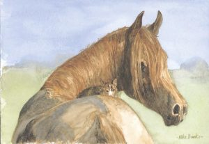 Kitten & Horse