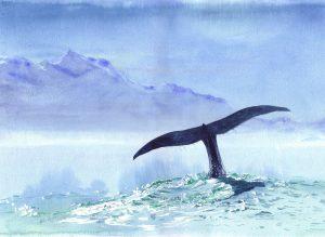 Whale Fluke - SOLD